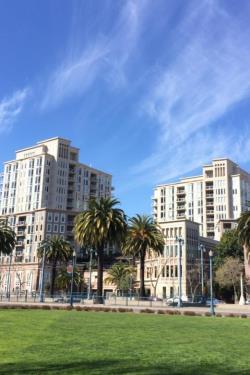 nền bãi cỏ rộng lớn với các tòa nhà cao tầng