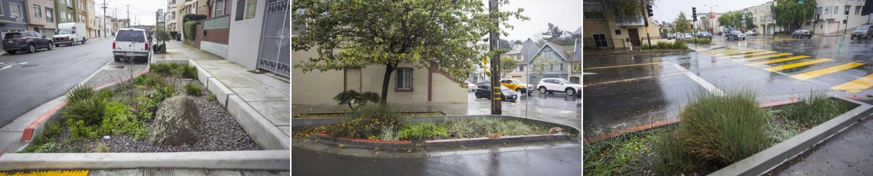 Tres ejemplos de jardines de lluvia