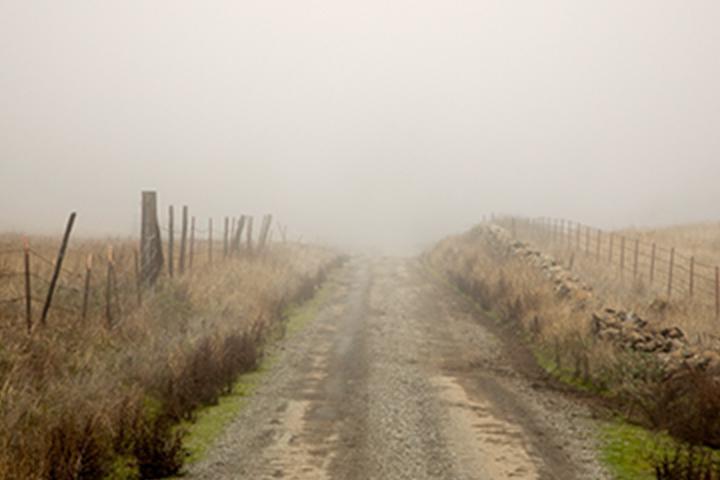 غيوم طريق البلد في الضباب