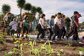 一群孩子進入社區花園