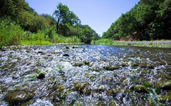 阿拉米達溪